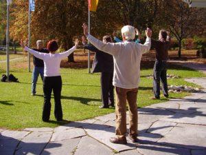 Het herhaaldelijk bewegen en correctademhalenwordt geacht de stroming vanQi(levensenergie) in het lichaam positief te beïnvloeden. Elk lichaamsdeel (met de nadruk op interne organen) wordt geacht een zekere mate van Qi te hebben.
